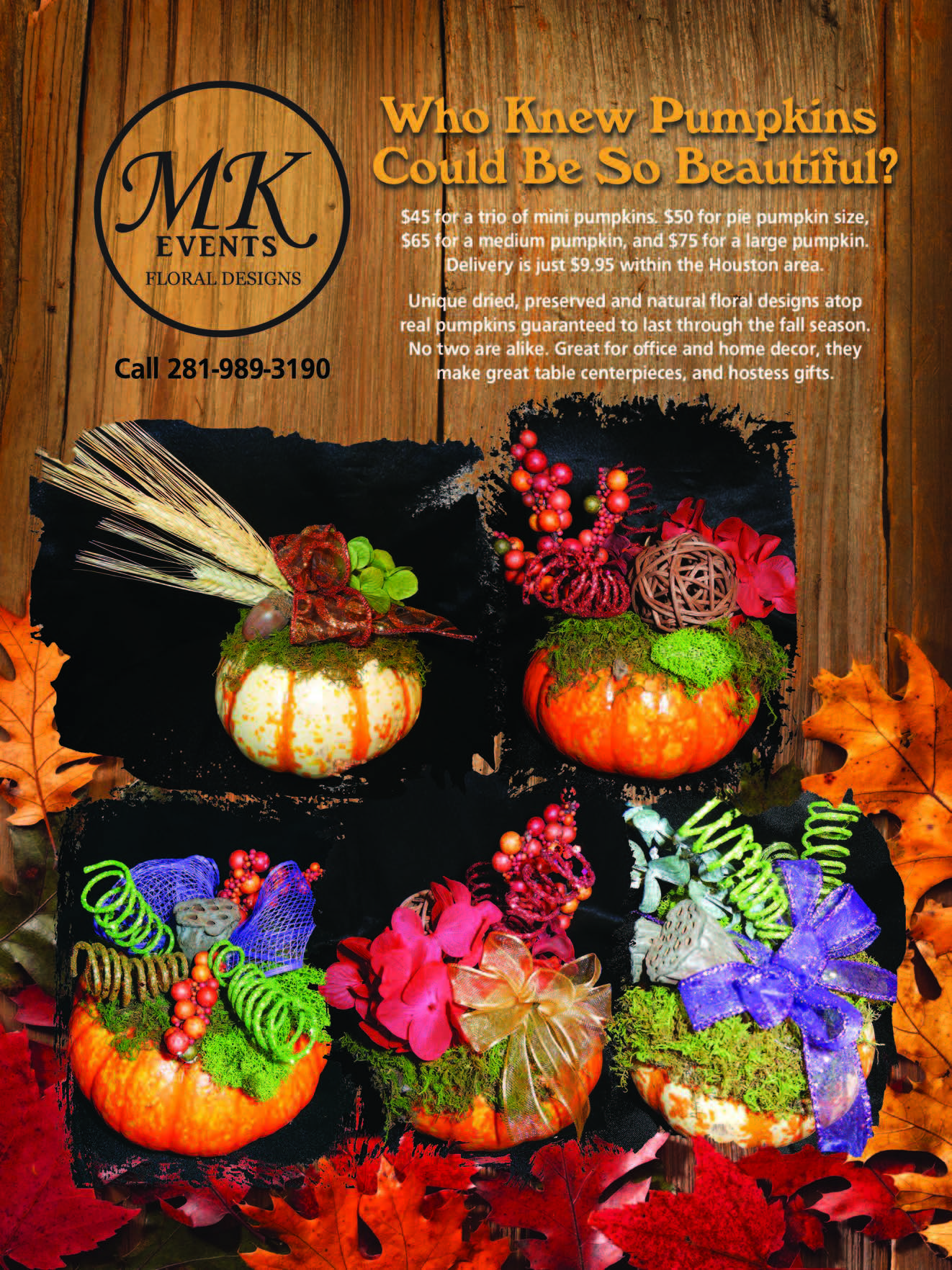MK_Events_Pumpkin_Flyer JPEG